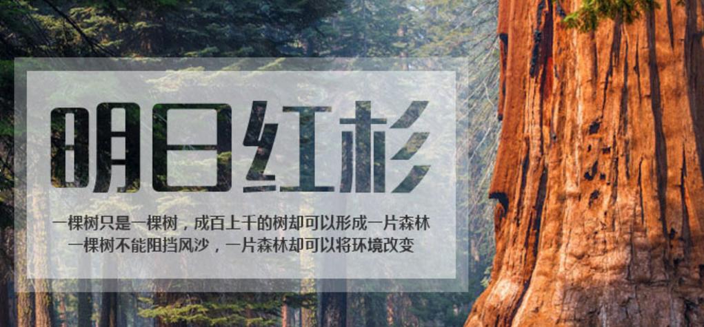 人益人团建新人课程:明日红杉