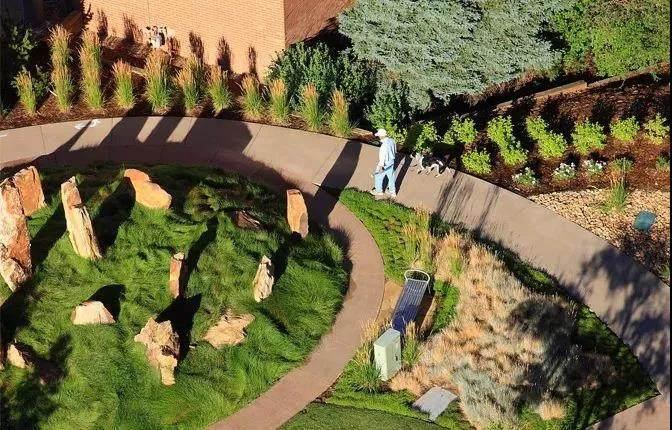 康复花园 | 如何将康养疗愈与园艺景观有机结合?